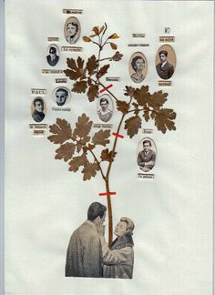 you could totally adapt this idea for having pics of the bridal party, or bride and grooms family tree to show parents and grandparents wedding days - LOVE IT! Collages, Collage Art, Tree Collage, Art Et Illustration, Illustrations, Art Journal Inspiration, Art Inspo, Feuille A3, Poesia Visual