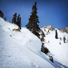 BlueBird Skies at Snowbird!