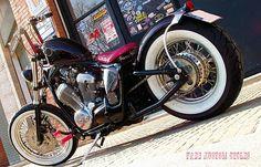 Honda Shadow   Old Dog Cycles
