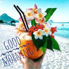 Good Morning, Instagram Posts, Buen Dia, Bonjour, Good Morning Wishes