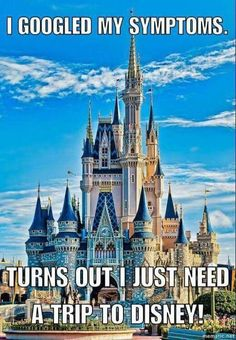 Cinderella Castle in Magic Kingdom, Walt Disney World Disney Parks, Walt Disney World, Mundo Walt Disney, Dvd Disney, Disney Love, Disney World Castle, Disney World Quotes, Walt Disney Castle, Disney Family Quotes