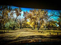 Fall in MT <3