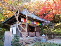 長谷寺(奈良・桜井市)2012年11月25日