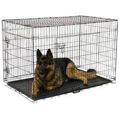 Archie & Oscar™ Archie Slide Aside Pet Crate & Reviews | Wayfair Pet Kennels, Dog Furniture, Puppy Care, Pet Mat, Pet Carriers, Dog Supplies, Doge, Dogs