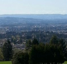 Park view in Beaverton, OR