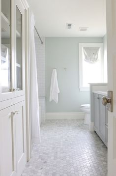 Tile/wall color idea --- Sherwin Williams Sea Salt in a bathroom with marble hexagon tile floor, natural light and white subway tile Bathroom Floor Tiles, Bathroom Renos, Tiled Bathrooms, Paint Bathroom, Marble Bathroom Floor, Small Bathrooms, Wainscoting Bathroom, Luxury Bathrooms, Guest Bathroom Colors