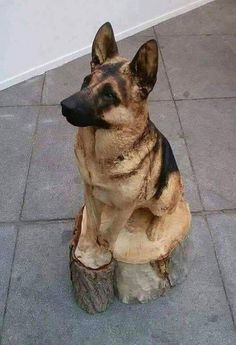 Carved from wood.at first glance i thought this was real! amazing artwork Holzschnitzen , Carved from wood.at first glance i thought this was real! amazing artwork Carved from wood.at first glance i thought this was real! Tree Carving, Wood Carving Art, Wood Carvings, Art Sculpture En Bois, Dog Tree, Wooden Art, Animal Sculptures, Gravure, Tree Art