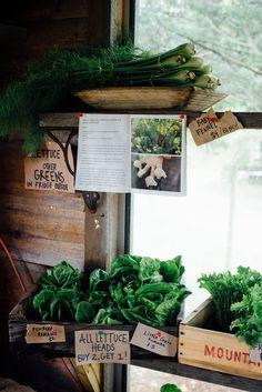 beetlebung farm   dolly and oatmeal