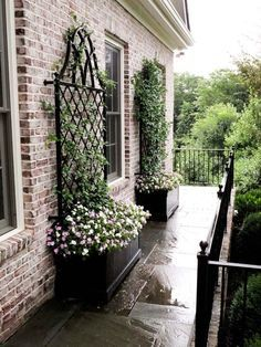 Contained garden trellis in black. Something like this would be cute on the right side of the porch.