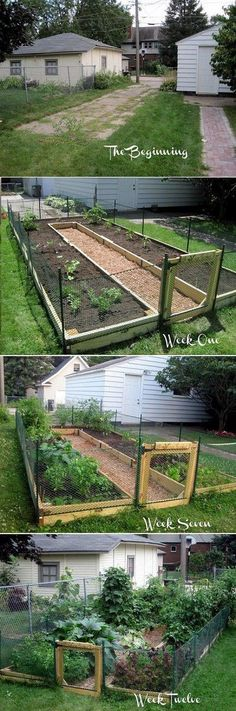 DIY U Shaped Raised Garden Bed. Idea for keeping rabbits out DIY U Shaped Raised Garden Bed.