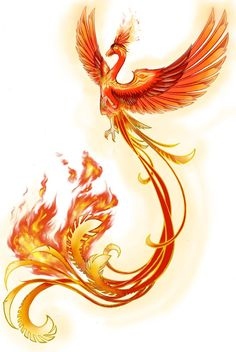 Phoenix (Consciousness) Rising From the Esoteric Ashes of Pyrification! - Phoenix (Consciousness) Rising From the Esoteric Ashes of Pyrification! Phoenix Artwork, Phoenix Drawing, Phoenix Images, Phoenix Painting, Phoenix Tattoo Feminine, Phoenix Bird Tattoos, Rising Phoenix Tattoo, Phoenix Feather, Pheonix Rising