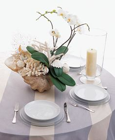 Seashell/Orchid Arrangement.  via brides.com