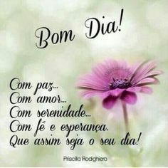 Good Day Quotes : QUOTATION – Image : Quotes Of the day – Description Resultado de imagem para yla fernandes bom dia Sharing is Caring – Don't forget to share this quote ! Good Day Quotes, Wish Quotes, Morning Quotes, Quote Of The Day, Bible Quotes, Words Quotes, Me Quotes, Peace Love And Understanding, Good Morning Happy