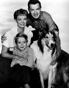 Lassie: Family in the 1950's are able to overcome all obstacles <3