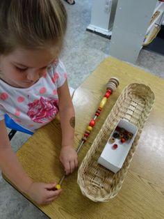 Inspired Montessori and Arts at Dundee Montessori: Practical Life