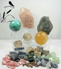 Animal Totem, Spirit Guide the Dragonfly and corresponding Crystals