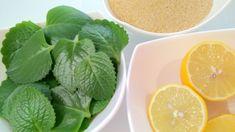 rymovnikovy-sirup4 Snack Recipes, Snacks, Lettuce, Aloe Vera, Healthy Life, Spinach, Herbalism, Food And Drink, Health Fitness