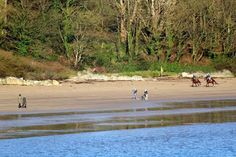 Visit Donegal - Google+ Visit Donegal Shared publicly  -  23 Nov 2014  #Donegal  Sunday morning on a Donegal beach (at Rathmullan)