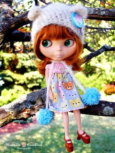 Blythe Doll.  Like this photo.