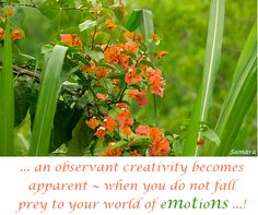... an observant #creativity becomes apparent ~ when you do not fall prey to your world of #emotions ...!