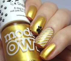 Models Own: for Dogs Trust ... 25 Carat Goldlimited edition nail polish