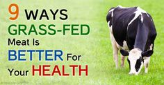 Simple Solutions to Many Problems on Grass-Fed Dairy Products