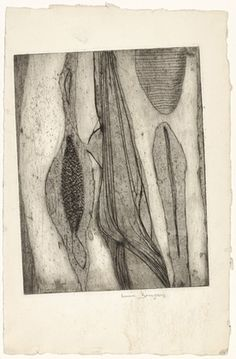 Louise Bourgeois. Les Mollesques (Mollusks), state III. (c. 1948)