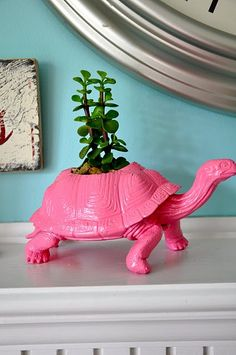 a cute turtle toy turned planter.  I love how it's not painted green.....the pink is so unexpected!
