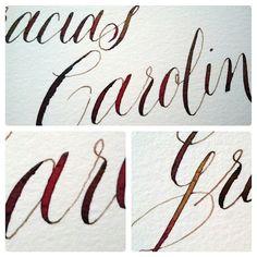 Gracias Carolina. Calligraphy. Caligrafía. Esther Gordo.