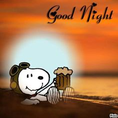 Snoopy Love, Charlie Brown Snoopy, Snoopy And Woodstock, Snoopy Images, Snoopy Pictures, Good Night Quotes, Good Morning Good Night, Goodnight Snoopy, Snoopy Family