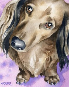 LONG HAIRED DACHSHUND Dog Art Print Signed by Artist D J Rogers on Etsy, $12.50 #DogsInArt Dogs In Art Longhaired doxie Puppy Dog Dogs Puppies