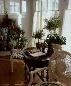 Plant Filled Room by Charles Spada-Weston, Massachusetts Home-Featured in Veranda
