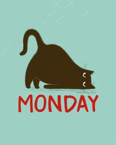 monday is the worst!