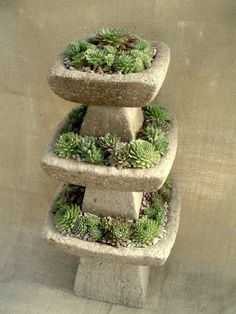 stacked bird baths planted w/hens & chicks. maybe we could make this with the mix we just learned about?