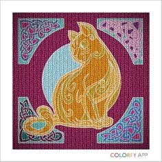 Kitty Kitty Cat