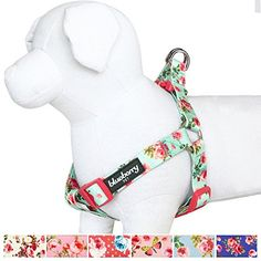 """Blueberry Pet Step-in Spring Scent Inspired Floral Rose Print Turquoise Dog Harness Chest Girth 16.5"""" - 21.5"""" Small Adjustable Harnesses for Dogs"""