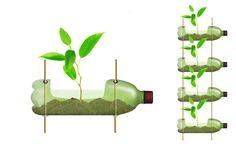 como fazer horta em apartamento com garrafa pet - Pesquisa Google