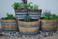 use 4 large planters for base (only need to buy the top 2) on the patio across from the back door