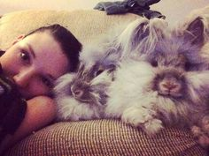 Snuggle TIME! #Angora #rabbit