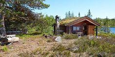 adelaparvu.com-despre-casa-de-lemn-15-mp-cabana-mica-casa-de-vacanta-Norvegia-Fyresdal-proprietar-Gunhild-Momrak-12.jpg (800×400)