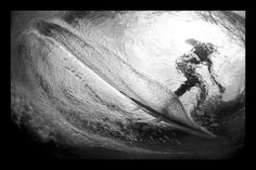 Fins     |       Aaron Chang      |       Fine Art Photography