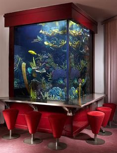 now that's a fish tank