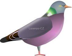 'Common wood pigeon' by Lorenzo-CZ Wood Pigeon, Chiffon Shirt, Skin Case, Long Hoodie, Ipad Case, Laptop Sleeves, Decorative Throw Pillows, V Neck T Shirt, Classic T Shirts