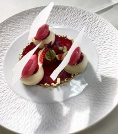 Parfait glacée aux lait d amandes ,confit de Figue noir sorbet Figue & Framboise#patisserie #instafood #foodporn #pastryaroundtheworld #dessert #masterclass @damien_piscioneri