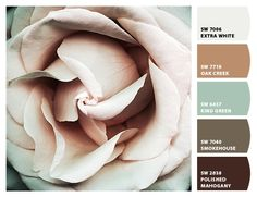 muted browns greens palest pinks beiges soft floral branding kitchen guest room bedroom office sunroom Paint colors from #ChipIt by #SherwinWilliams