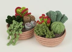Succulent+Collections+eight+realistic+PDF+CROCHET+di+PlanetJune,+$12.75