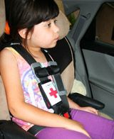 Medipal's Seatbelt ID is a Medical Alert!     Your information in the hands of EMTs NOW.     • IMMEDIATE RETRIEVAL – Emergency Personnel can have your medical information in their hands in a matter of seconds. Appropriate medical treatment can begin immediately and personal contacts called. Peace of mind can be yours, knowing that your information is at-the-ready.     • COMPREHENSIVE –  The enclosed Health Form alerts Emergency Personnel of your medical condition.