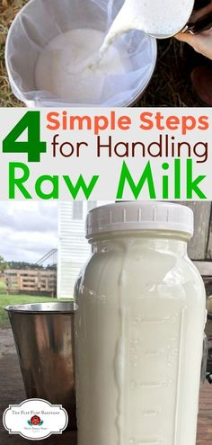 How to handle raw milk- Raw milk is easy to handle when you know the proper steps to take. Your raw milk will taste fresh and clean when handled correctly. Goat Milk Recipes, No Dairy Recipes, Real Food Recipes, Yummy Food, Mini Farm, Mini Cows, Goat Farming, Homemade Cheese, Fresh Milk