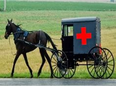 Discovery of Tourettes Rocks Amish Community, Fuels Obamacare ...