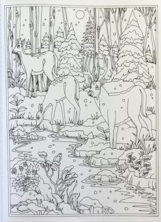 Creative Haven Winter Wonderland Coloring Book (Adult Coloring) Coloring Pages Winter, Farm Animal Coloring Pages, Christmas Coloring Pages, Coloring Book Pages, Printable Coloring Pages, Free Coloring, Coloring Sheets, Painting Patterns, Color Patterns